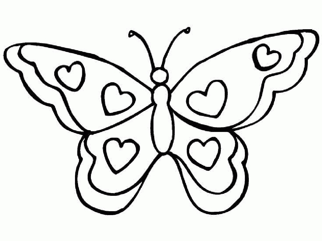 1069x800 Revisited Cartoon Butterfly Coloring Pages Gir