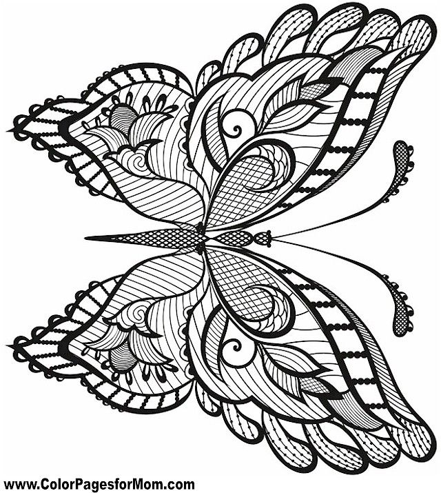 640x715 Butterfly Coloring Page Butterflies To Color
