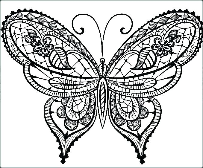 678x562 Butterfly Coloring Pages For Adults Printable Coloring Pages