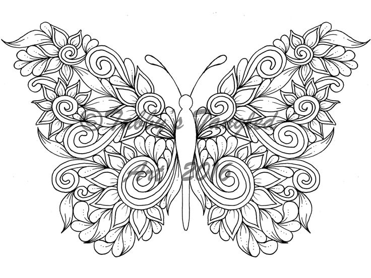 736x552 Butterfly Coloring Pages For Adults Best Butterfly Coloring