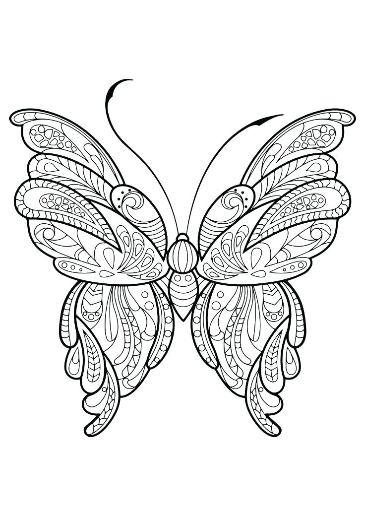 736x1040 Butterfly Coloring Book Also Butterflies Coloring Book Adult