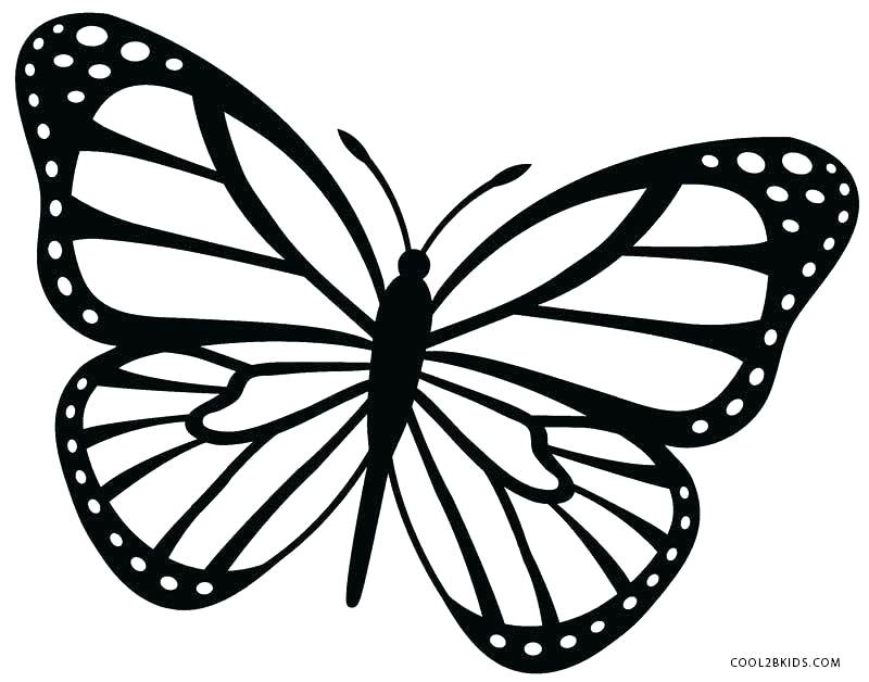 800x628 Butterfly Coloring Book Pages To Print Kids Coloring Butterfly