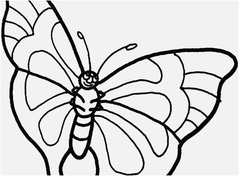 827x609 The Perfect Pic Printable Butterfly Coloring Pages Progressive