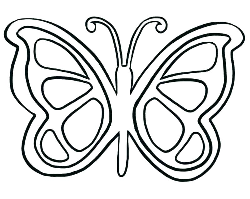 800x635 Butterfly Colouring Pages For Adults Beautiful Coloring Preschool