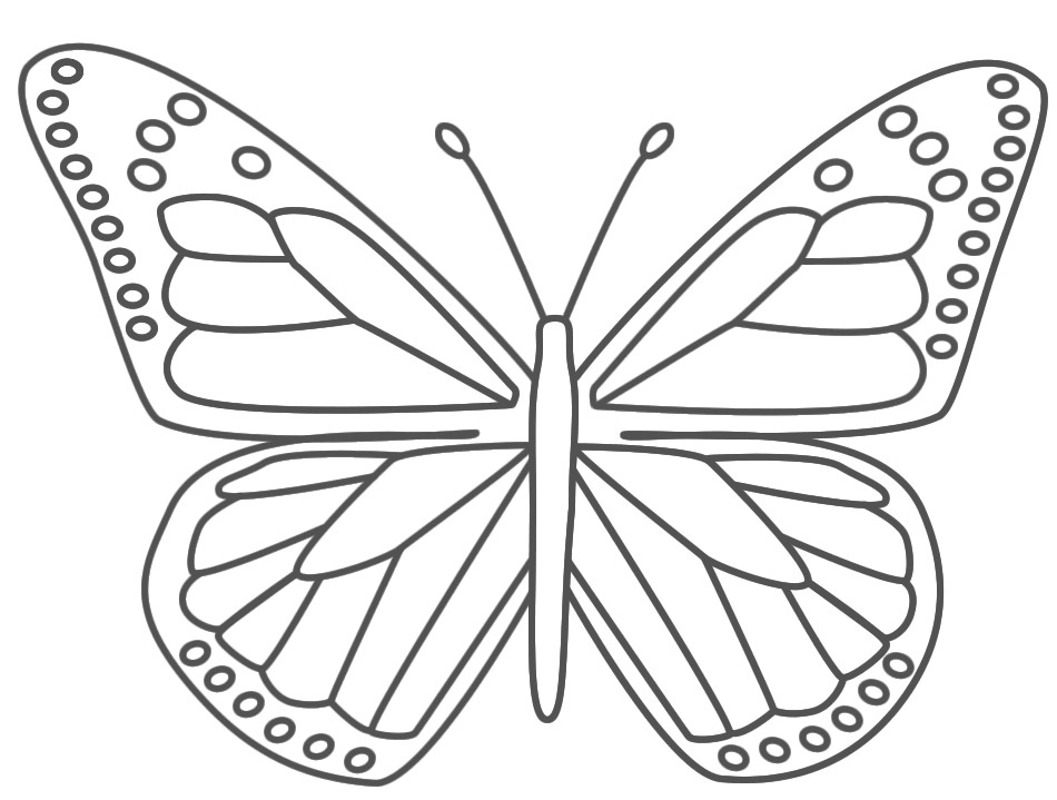 950x719 Butterfly Coloring Pages For Preschool Printable Coloring Pages