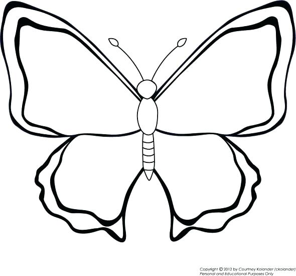 590x549 Butterfly Coloring Pages For Preschool Simple Butterfly Coloring