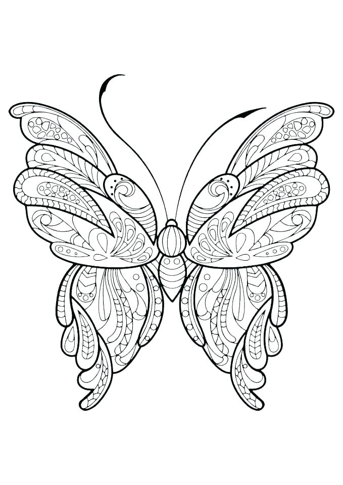 679x960 Coloring Page Of A Butterfly Deepart