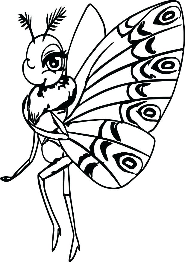 618x877 Butterfly Coloring Page Life Cycle Of A Butterfly Coloring Page