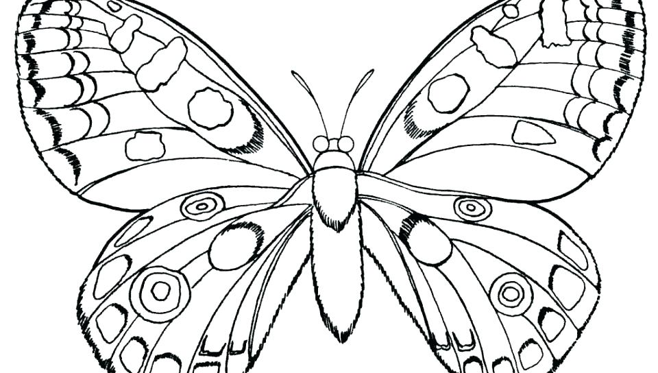 960x544 Butterfly Coloring Pages Coloring Pages Simple Butterfly Coloring