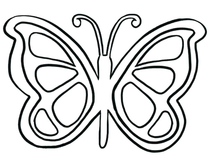 800x635 Butterfly Coloring Pages For Adults Printable Children Butterfly