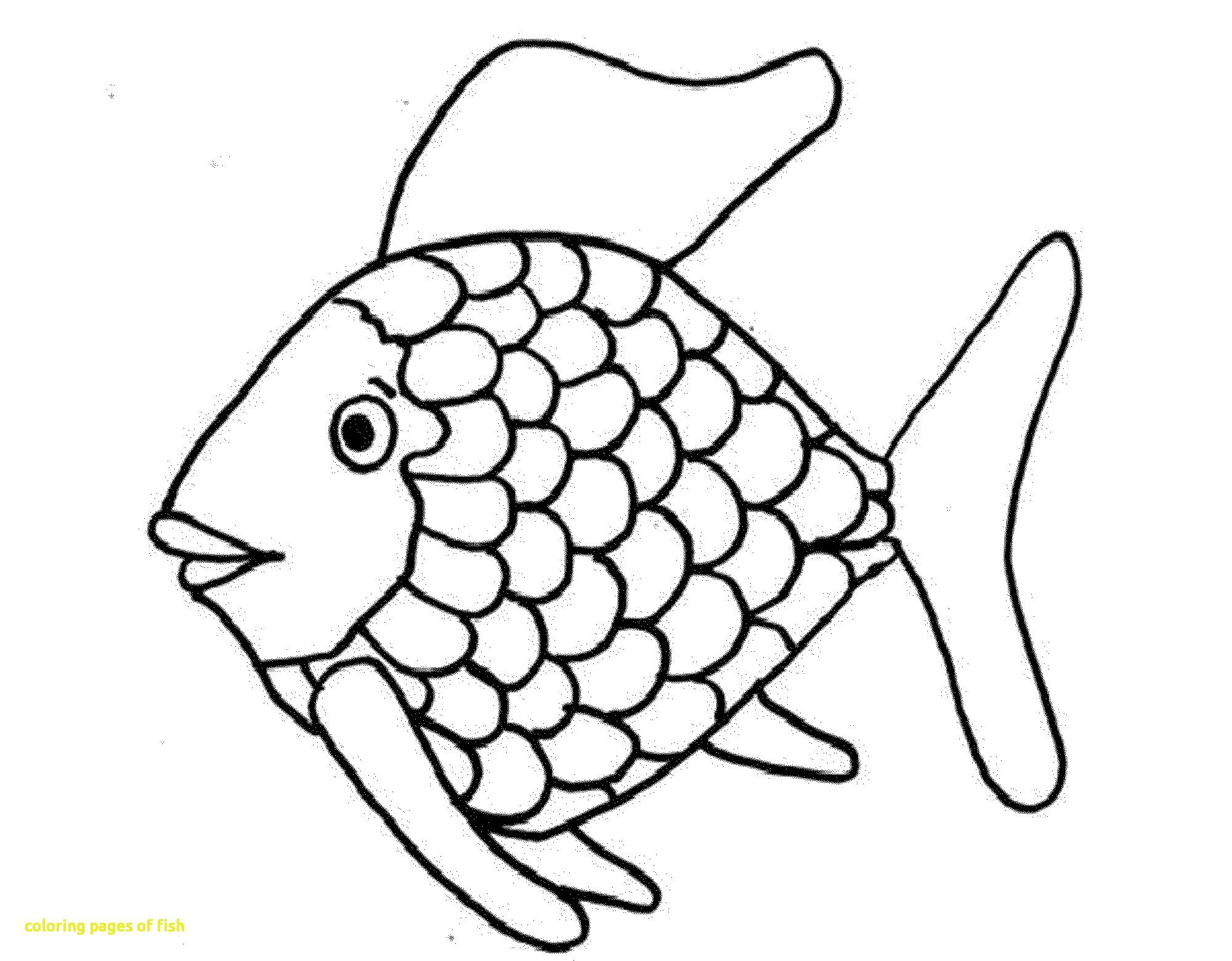 2000x1560 Fish Color Pages
