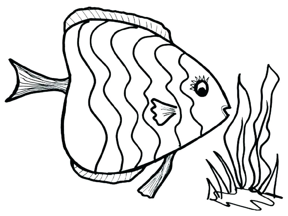 1000x750 Fish Color Pages Realistic Fish Coloring Pages Fish Images