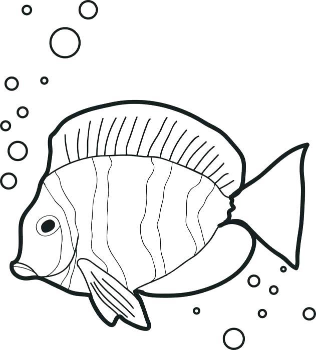 631x700 Fish Coloring Page Fish Coloring Pages Fish Coloring Sheets
