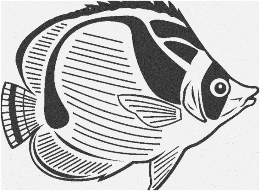 827x609 Fish Coloring Pages Pdf Design Print Download Cute And Educative