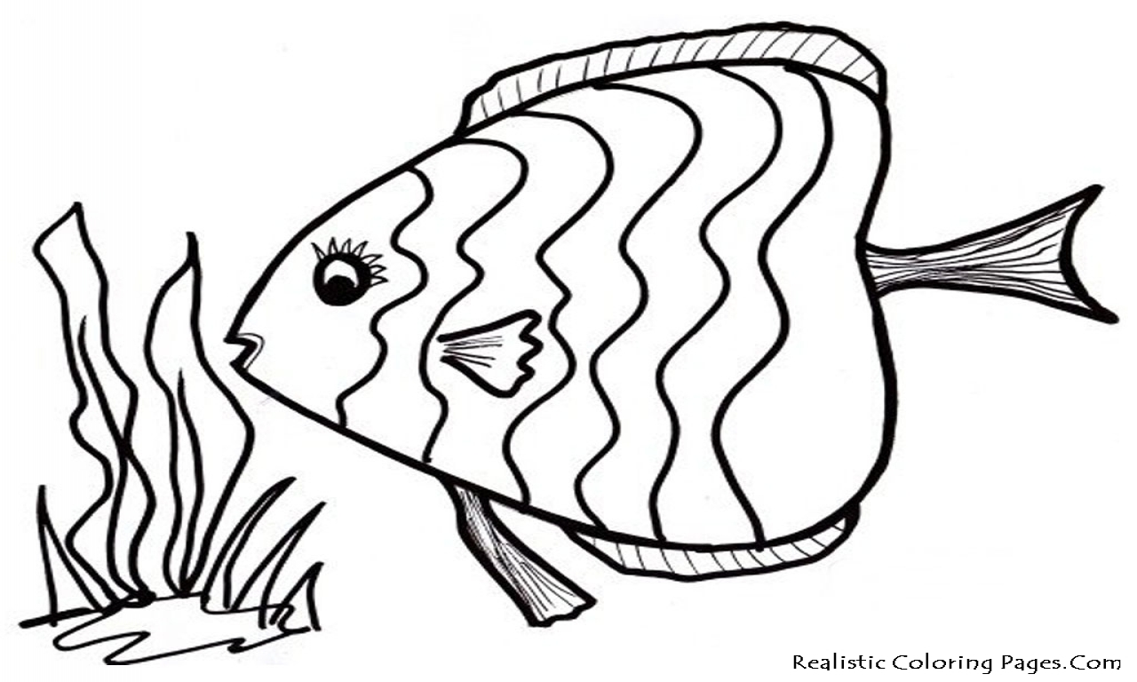 1280x768 Fish Coloring Pages To Print