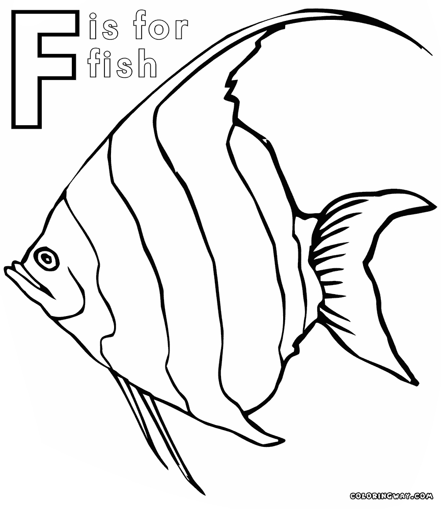 866x1000 New Angelfish Coloring Page Design Printable Coloring Sheet