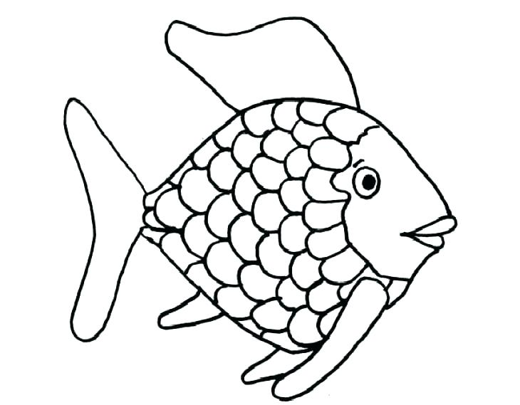 730x569 Ocean Fish Coloring Pages Tropical Fish Coloring Pages Rainbow