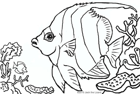 450x303 Animal Coloring Pages