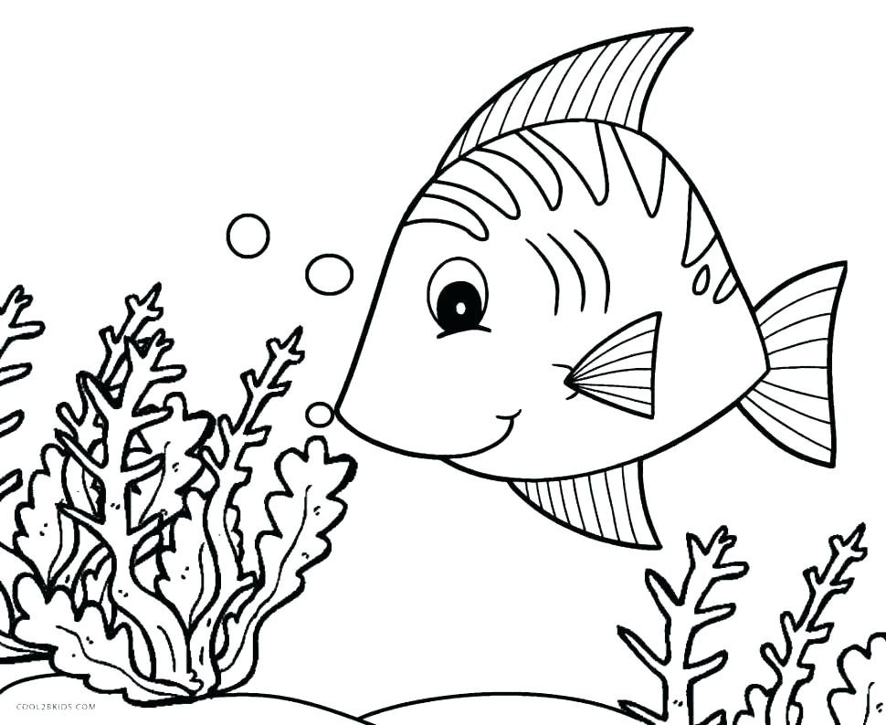970x794 Realistic Fish Coloring Pages Tropical Fish Coloring Pages