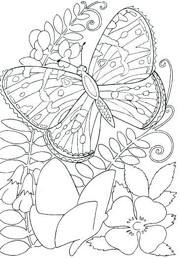 366x525 Coloring Pages Flower Flower Coloring Pages For Kids To Print Hard