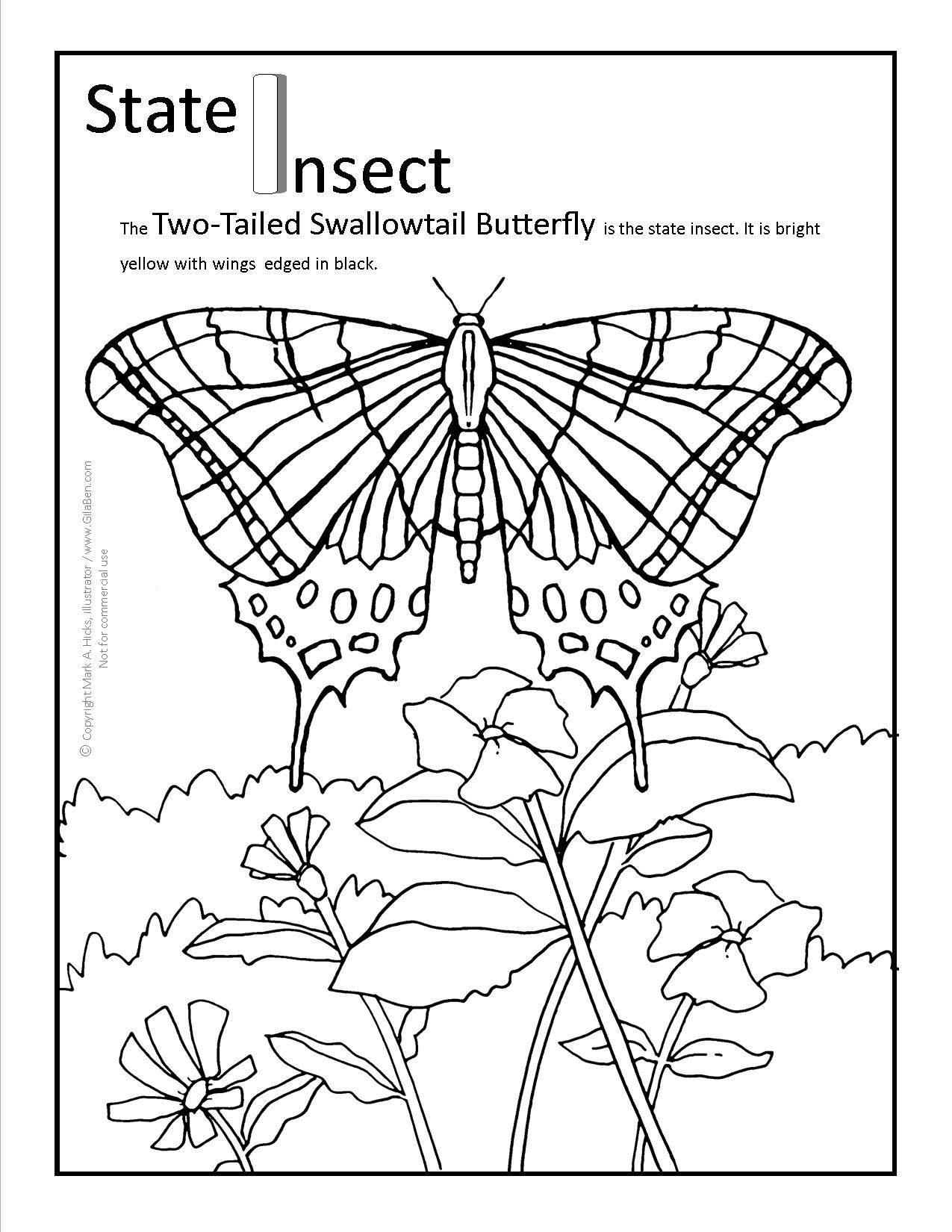1275x1650 Arizona Coloring Pages Printable