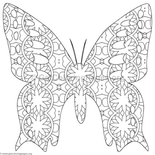 520x520 Detailed Butterfly Coloring Pages