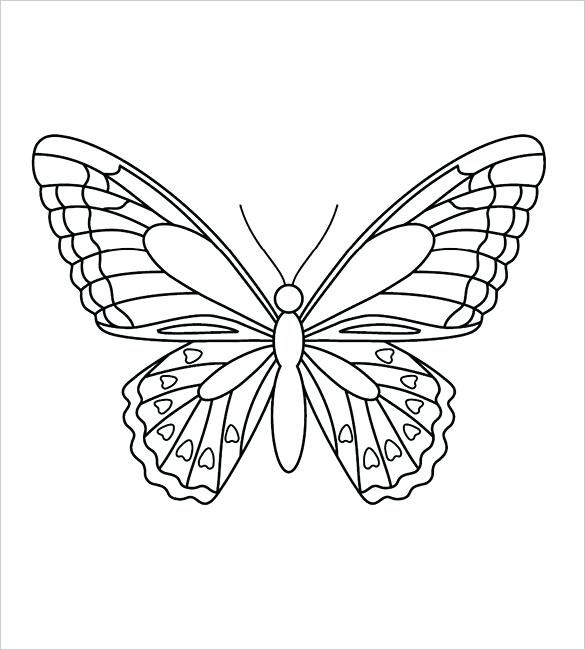 585x650 Outline Of Butterfly To Color Butterfly Outline Colouring Page