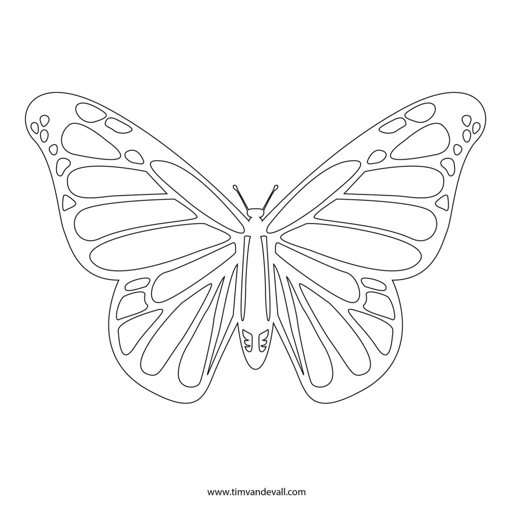 1024x1024 Printable Butterfly Outline