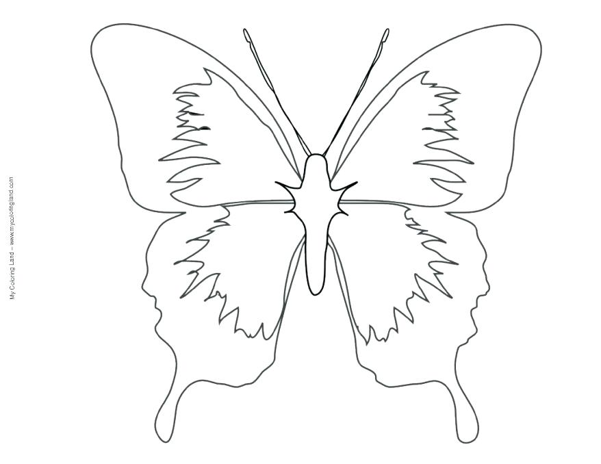 878x678 Share Various Butterfly Mask Printable Template Free Printable