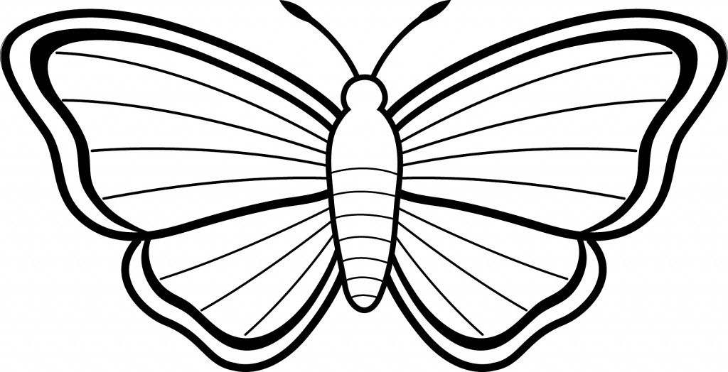 1024x524 Simple Butterfly Coloring Pages Outlines Butterfly