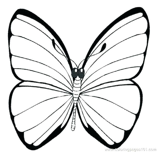 650x626 Beautiful Butterfly Color Page Beautiful Butterfly Color Page