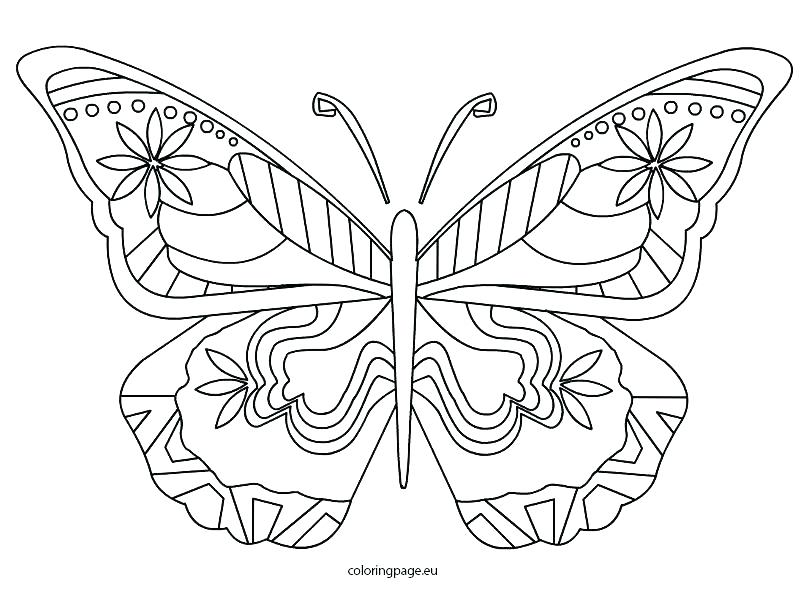 808x595 Coloring Pages Of A Butterfly Coloring Butterfly Butterfly Wings