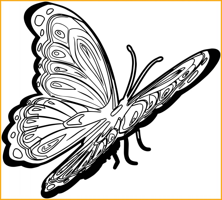 870x787 Inspiring New Butterfly Picture Coloring Page Wecoloringpage