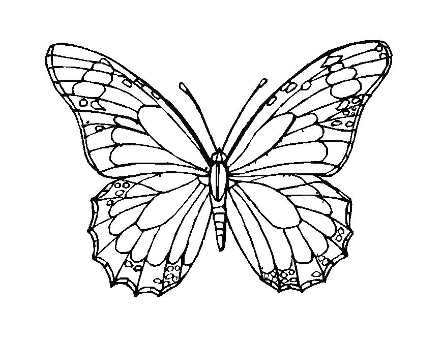 869x671 Simple Butterfly Coloring Pages Colouring Pages Of Butterflies