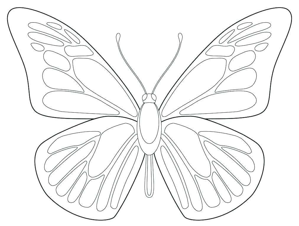 1012x766 Butterfly Coloring Book Butterfly Wings Coloring Pages Butterflies