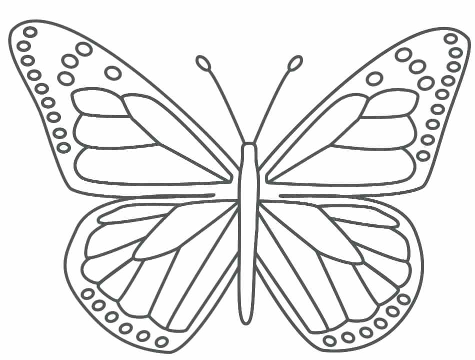 950x719 Butterfly Coloring Pages For Kids Butterfly Wings Coloring Pages