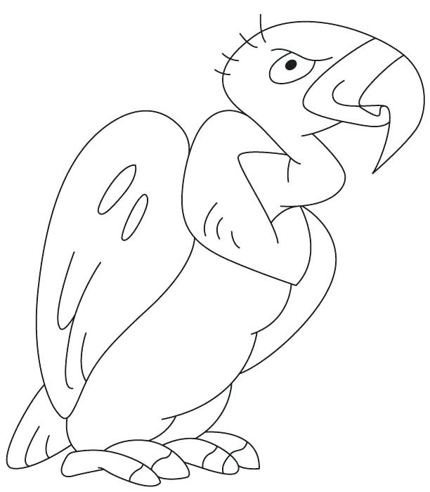 612x700 Vulture Coloring Page Cartoon Grinning Buzzard Vulture Coloring