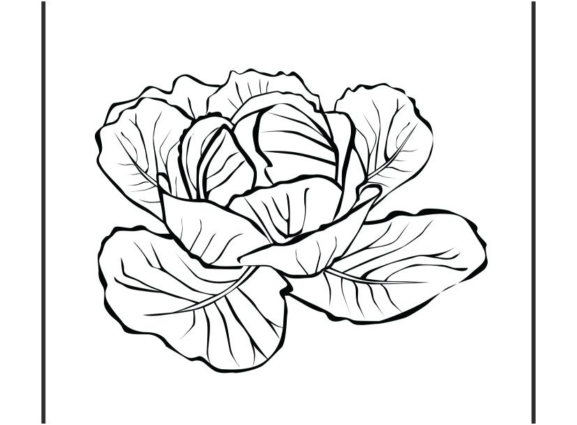 827x609 Coloring Pages Plants Sprout Coloring Pages Stock Cool Coloring