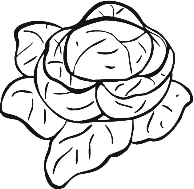 630x614 Vegetables Coloring Pages