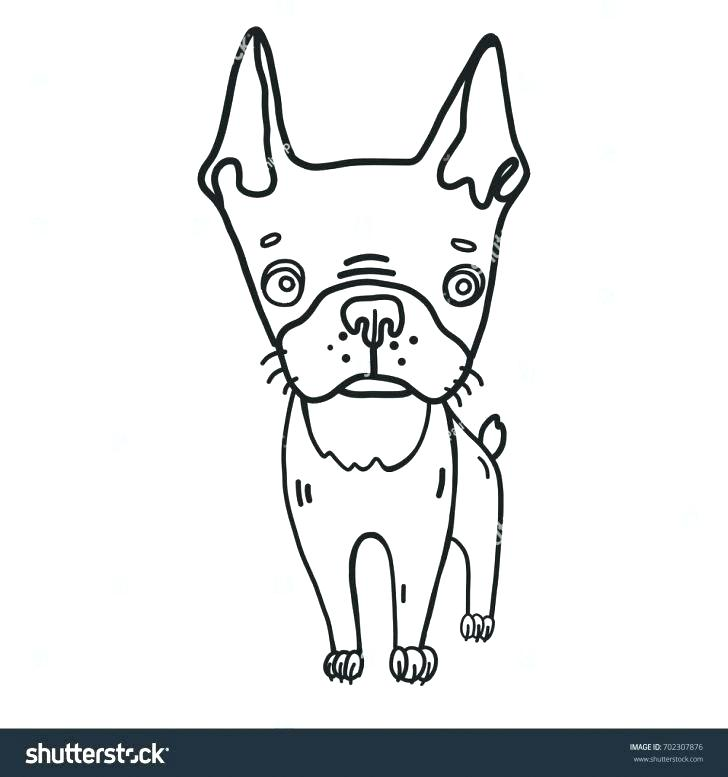 728x777 Coloring Pages Puppy Coloring Page Bell Cairn Terrier Coloring