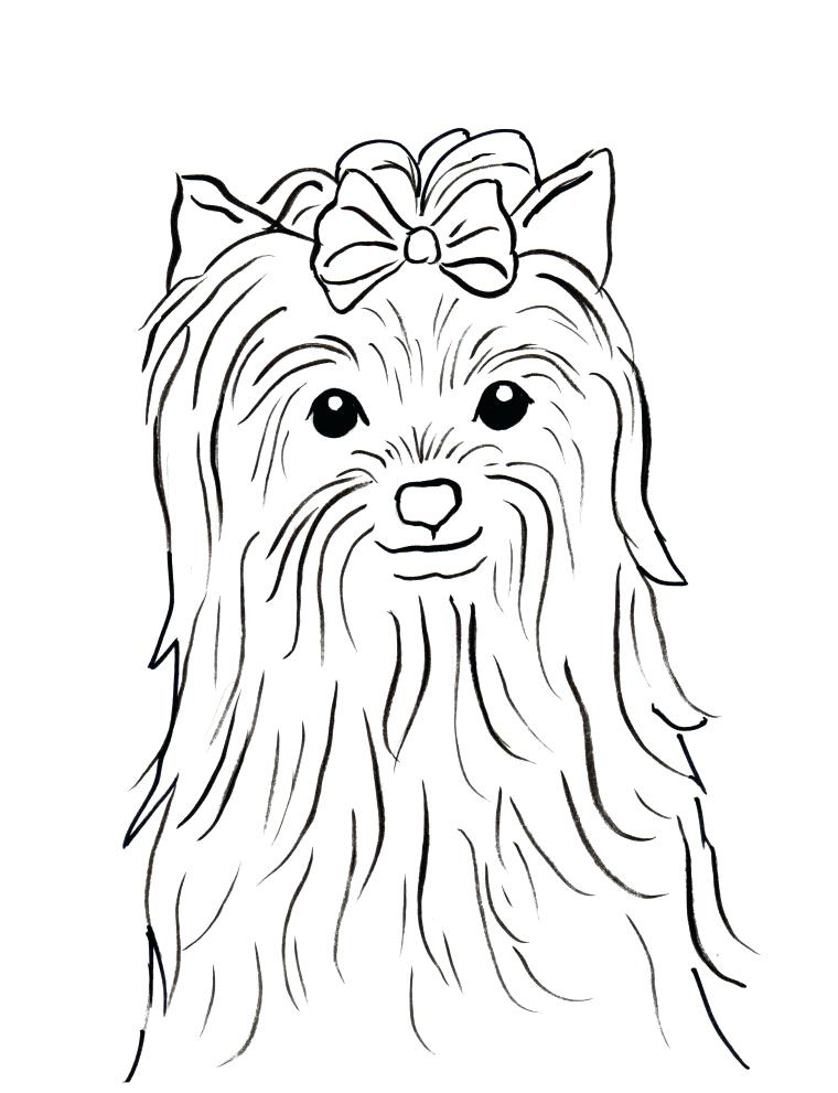 760x991 Yorkie Coloring Page Click To See Printable Version Of Cairn