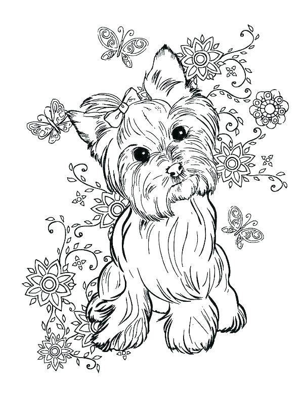599x776 Yorkie Coloring Pages Coloring Pages Awesome Coloring Pages Image