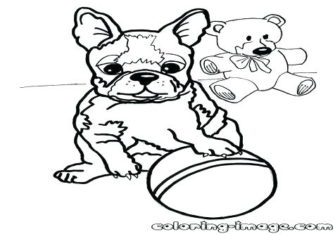 476x333 Boston Terrier Coloring Page