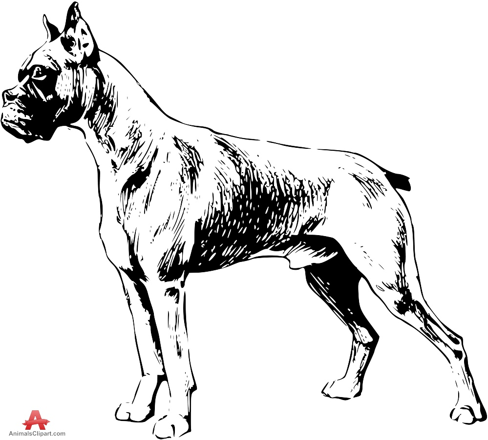 Cairn Terrier Coloring Pages at GetDrawings com | Free for