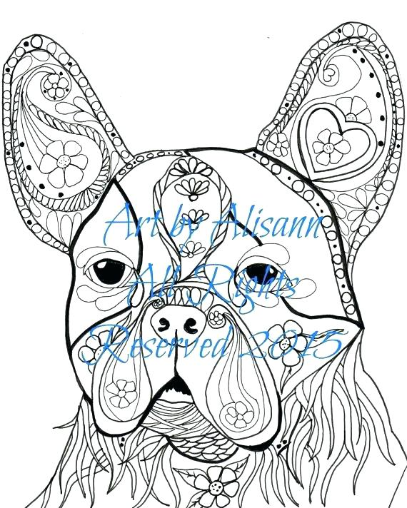 570x712 Boston Terrier Coloring Page Terrier Coloring Page Educational