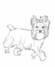 236x285 Cairn Terrier Coloring Page Home Cairn Terriers