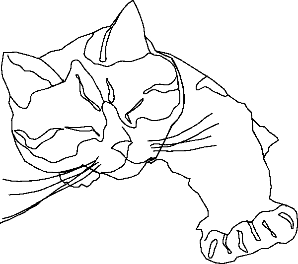 600x532 Calico Cat Coloring Pages Art Line Drawings Sleepy Calico Cat Line
