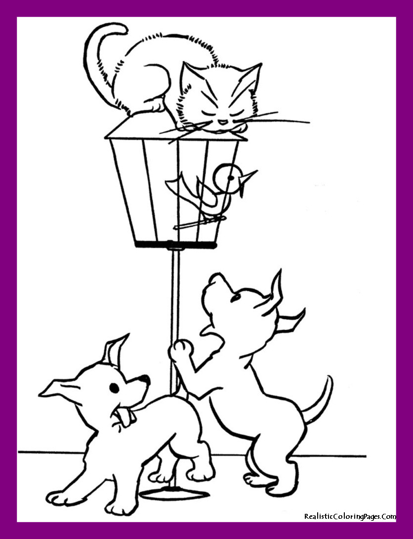 836x1092 Appealing Luxury Calico Cat Coloring Pages Picture Of Cute Trend
