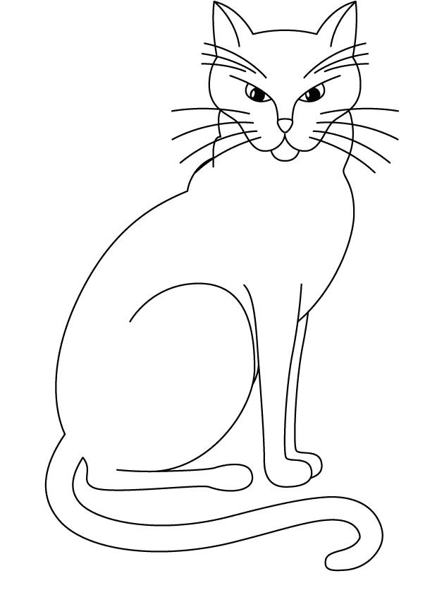 620x843 Big Cat Who Is Angry Coloring Page Cat And Dog Drawings