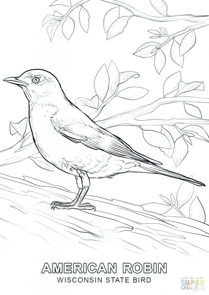 725x1024 California State Bird Coloring Page State Bird Coloring Pages